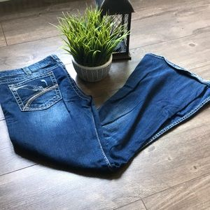 Silver Jeans (Flare)